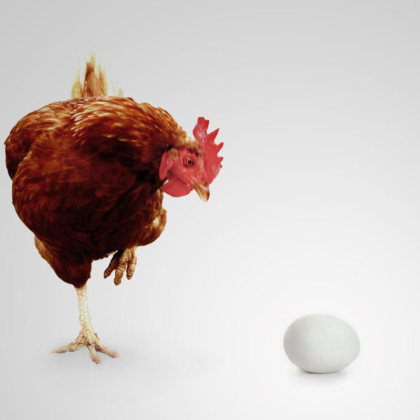 Henne oder Ei zum Artikel Zutrittsmanagement