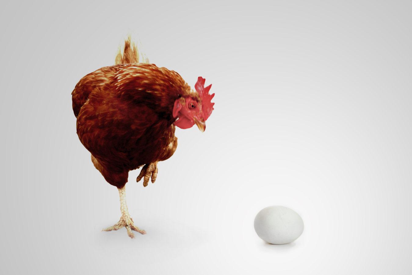 Henne oder Ei – Wer war zuerst da?